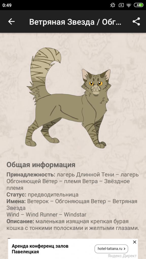 Коты-Воители Описание