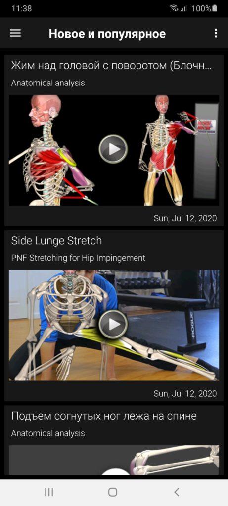 Muscle Motion Новое