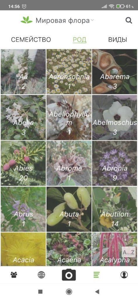 PlantNet Категории