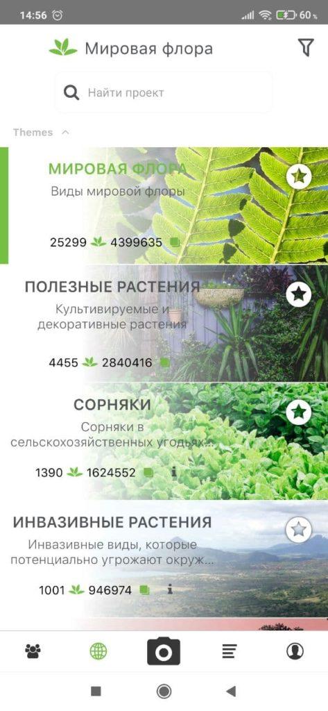 PlantNet Проекты