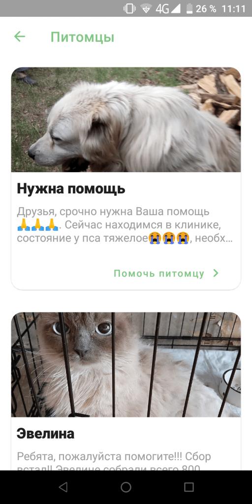 iBolit помощь животным Питомцы