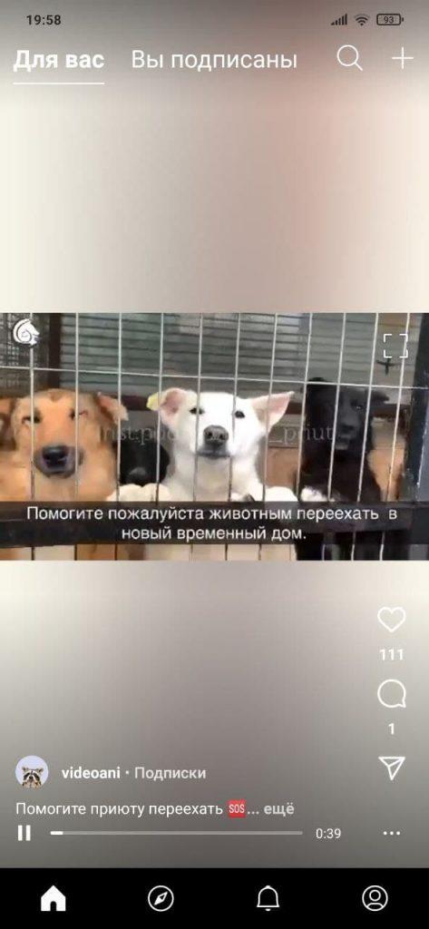 IGTV Плеер