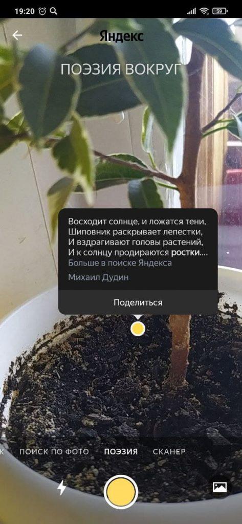 Яндекс Камера Стихи